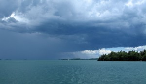Tee Harbor Squall